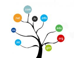 cara membuat nama domain, cek nama domain baru, domain .com murah, cek domain indonesia, cara beli domain id, menentukan nama domain paling bagus, menentukan nama domain web, cara mendapatkan nama domain, bayar domain dengan paypal, domain tanpa kartu kredit