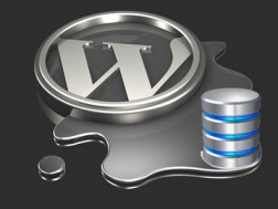 establishing-a-database-connection, masalah wordpress, wordpress error, database not running, database website error