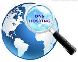 cara mendapatkan dns hosting gratis, menggunakan dns hosting, memakai dns hosting domain, menambahkan domain ke dns hosting, free dns hosting providers