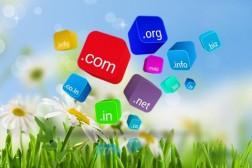 cara perpanjang domain di namecheap, memperpanjang domain lama, perpanjang domain pandi